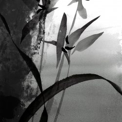 Tyna Majczuk – Print Nr.1